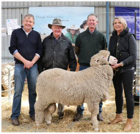 Moorundie M4774 Purchased Sheepvention 2018 for $10,000 Geoff Davidson, Bill Mildren, Darren Cameron, Bernadette Davidson